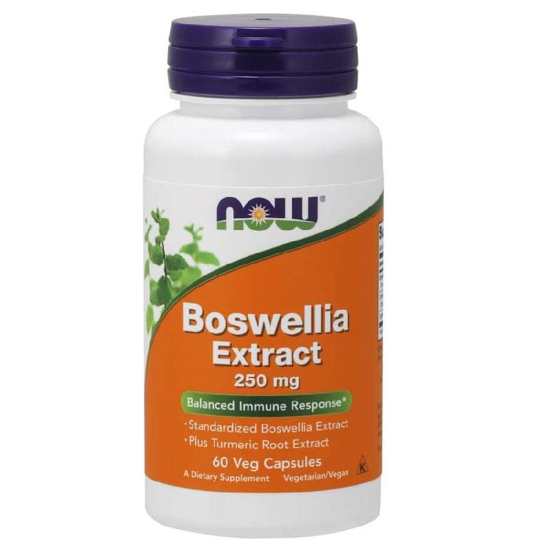Now Boswellia Extract
