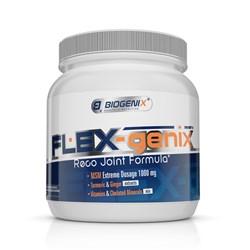 Flex-Genix
