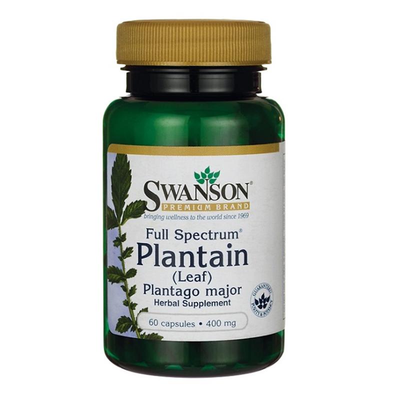 Swanson Full Spectrum Plantain (Leaf) Plantago Major