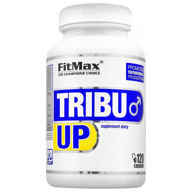 Fitmax Tribu up